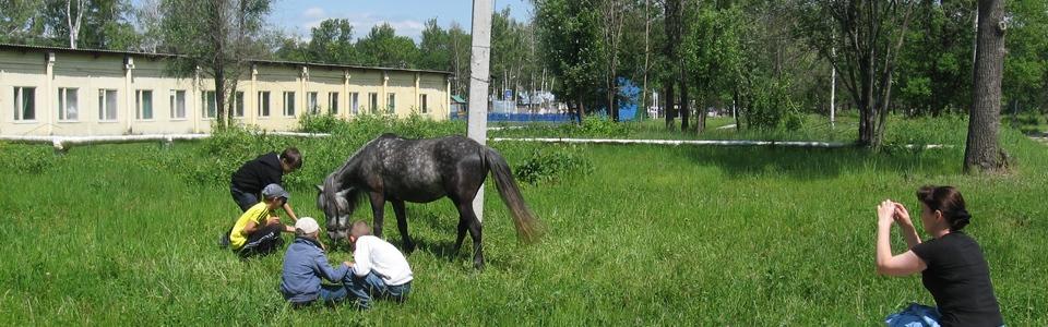 конный клуб